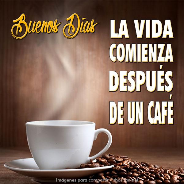 La Vida Comienza Despues De Un Cafe