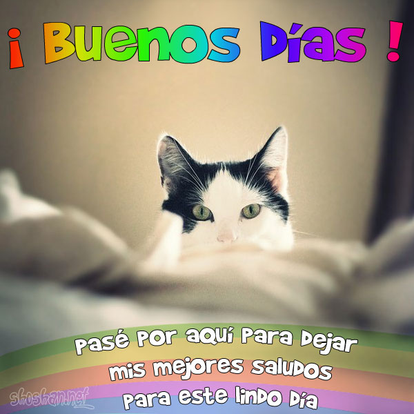 Frases Con Imagen Para El Dia Del Padre | apexwallpapers.com