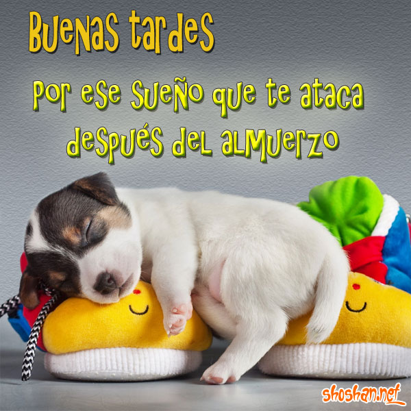 Buenas Tardes Amig@s - Página 4 Imagen_buenas_tardes