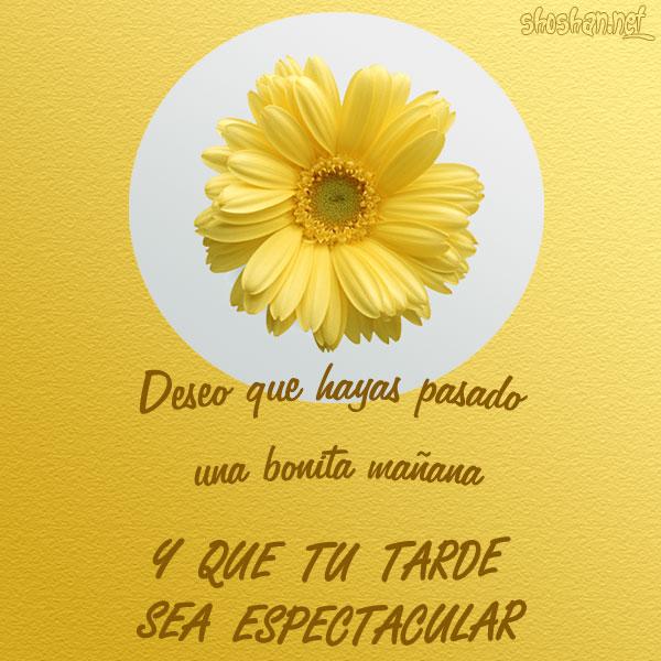 Buenas Tardes Amig@s Una_tarde_espectacular