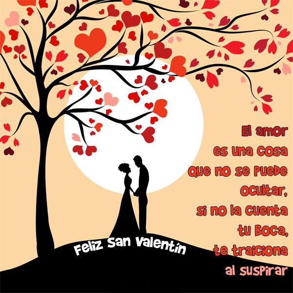 Imágenes de San Valentín El amor es una cosa que no se